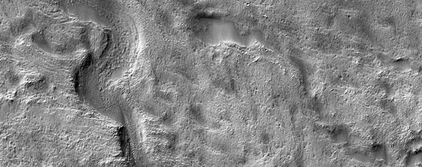 Meandering Channel in Newton Crater
