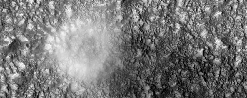 Dust Devil East of Hellas Planitia