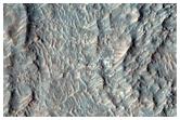 Possible Kaolinite Deposit on Kashira Crater Floor