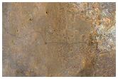 إطلالة فريدة من المستكشف كيريوسيتي في خليج يلونايف