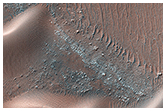 Migrating and Static Sand Ripples on Mars