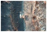 Layered Materials on Northeast Hellas Region Rim