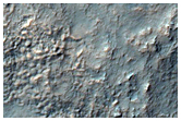 Tyrrhena Region Phyllosilicate on Scarp