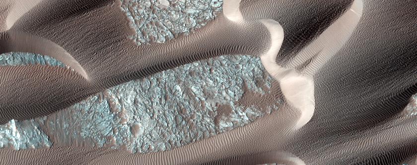 Continual Dune and Ripple Migration in Nili Patera