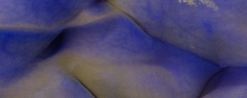 Two-Color Dunes in Meridiani Terra