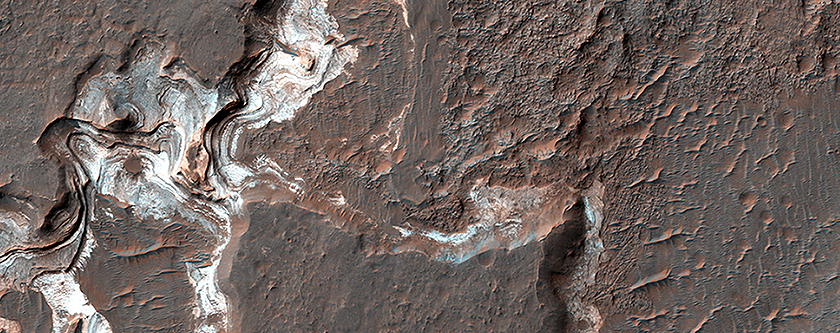 Bright Sediments on the Floor of Ladon Basin