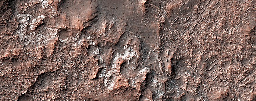Looking for Salts on Mars