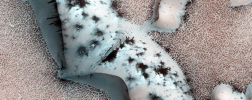 Shapes and Spots on a Polar Sand Dune