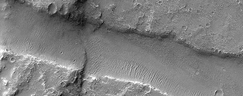 Finding Faults in Melas Chasma