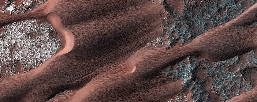 The Active Dunes of Nili Patera