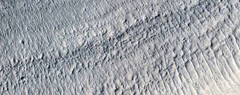 Concentric Crater Fill in Northeast Arabia Terra