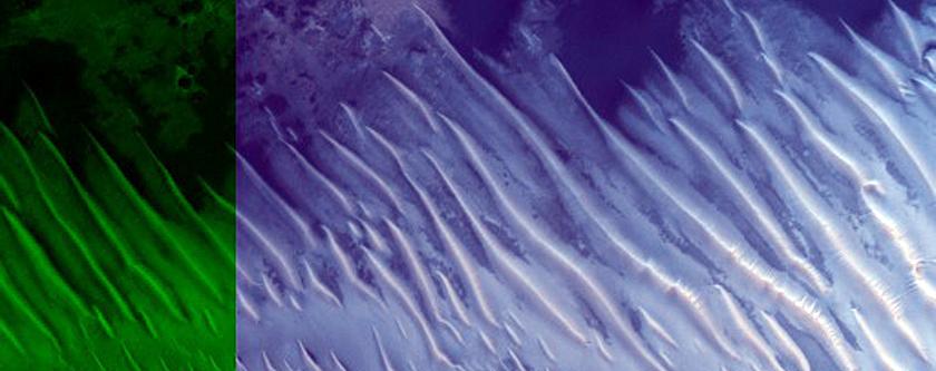 Monitoring Possible Active Dark Dunes in Arabia Terra
