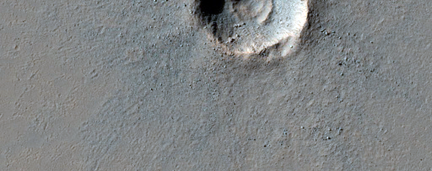 Terraced Crater in Highlands South of Ius Chasma