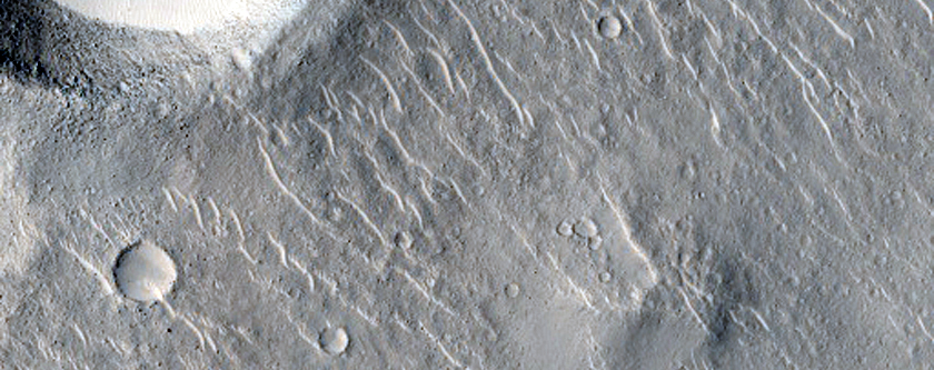 Bright Objects in Isidis Planitia Crater
