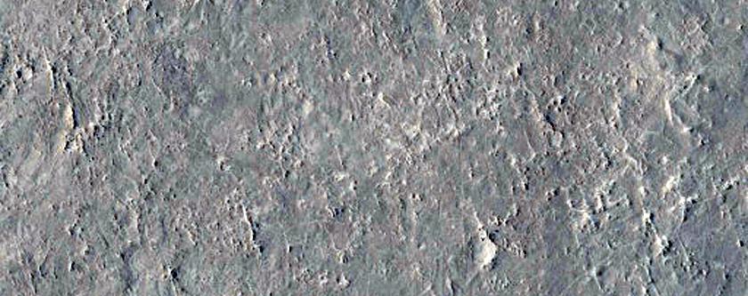 Oxia Palus
