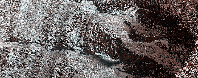 Frosted Gullies in a Central Pit