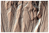 Activity in Martian Gullies