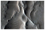 Crater Floor Features in Tempe Terra