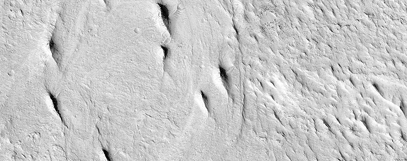 Inverted Meandering Rivers at a Possible Future Mars Landing Site