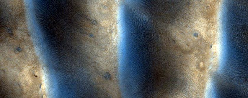 Eroding Dunes and Dust Devil Tracks in Terra Cimmeria