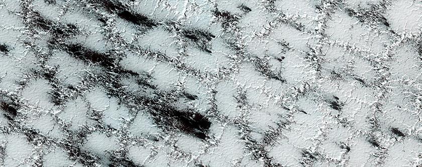 Un maravilloso mundo congelado