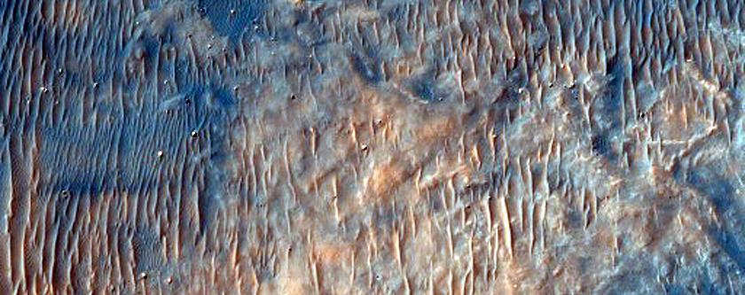 Green Crater Dune Monitoring