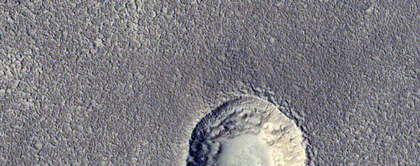 Kowdoll Liesterrashes Possybyl yn Arcadia Planitia