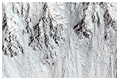 Recurring Slope Lineae in Raga Crater