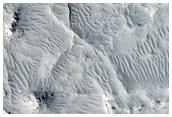Ridges in Eastern Elysium Planitia
