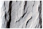 Yardang-Sculpted Deposits from Apollonaris Patera