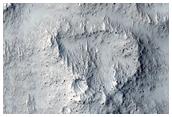 Ring-Shaped Landforms between Arcadia Planitia and Amazonis Planitia
