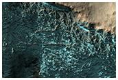 Gullies in Crater Wall in Terra Sirenum
