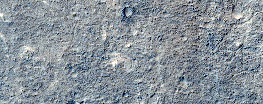 Candidate Landing Site for 2020 Mission in Hypanis Valles Delta