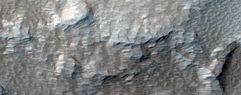 Cone-Like Structure in Tharsis Region