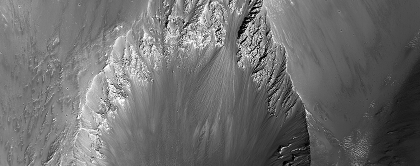 On the Shape of Impact Craters