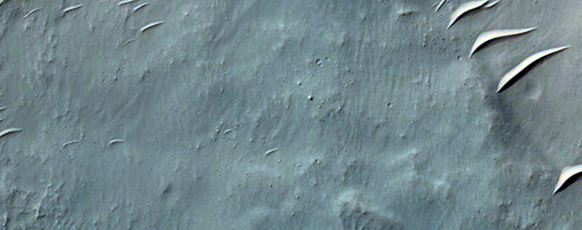 Gullies in Eroded Crater Near Newton Crater