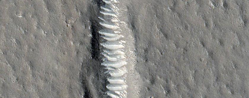Fractures in Utopia Planitia
