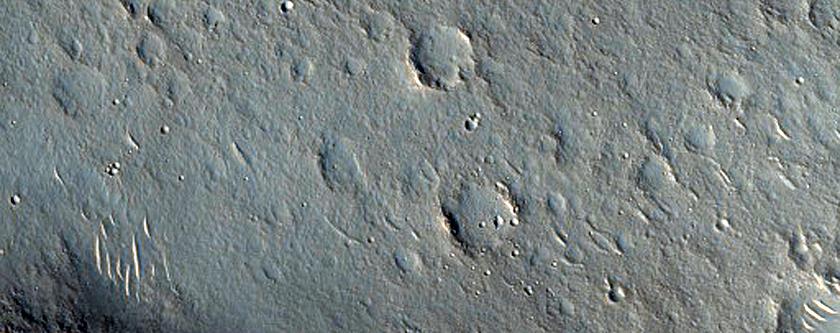 Ridges in Utopia Planitia