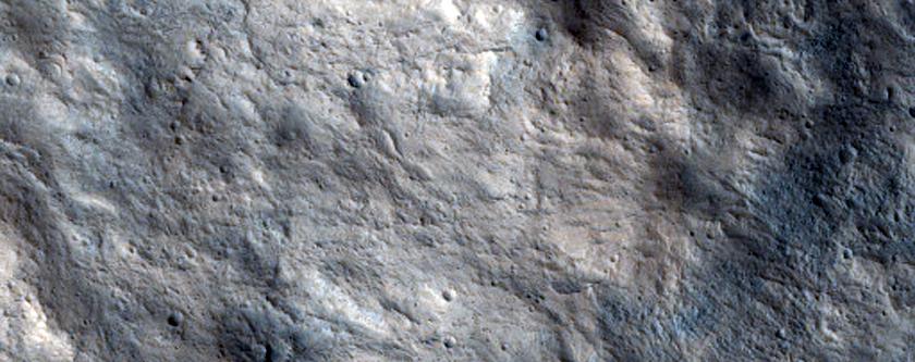 Lederberg Crater Rim