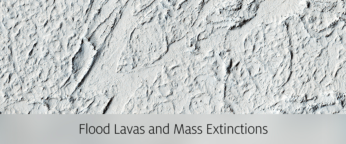 Flood Lavas and Mass Extinctions