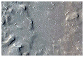 Monitoring Features for Changes in Cerberus Fossae