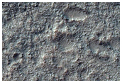 Bedrock in Crater Floor