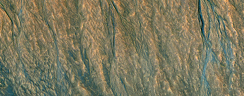 Gullies with Color Anomalies