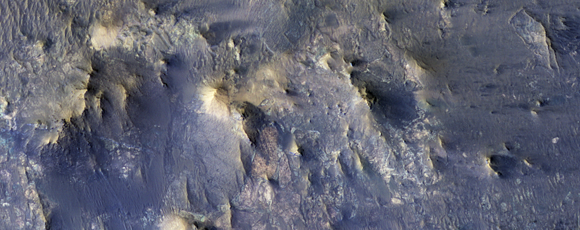 Better Preserved on Mars than on Earth