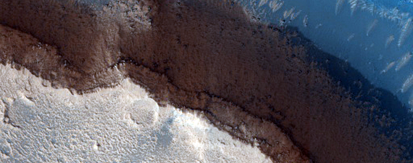 Channels on Top of Channels in Elysium Planitia