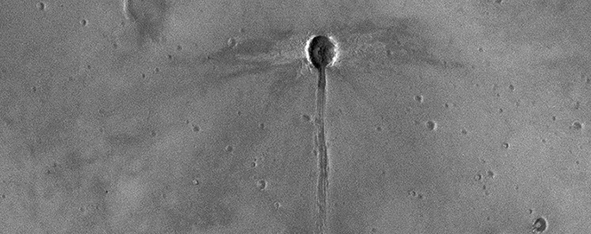 A Dragonfly-Shaped Crater