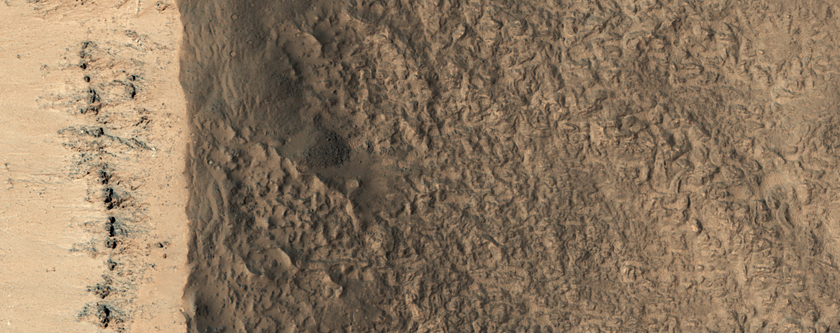 Crater Near Reull Vallis