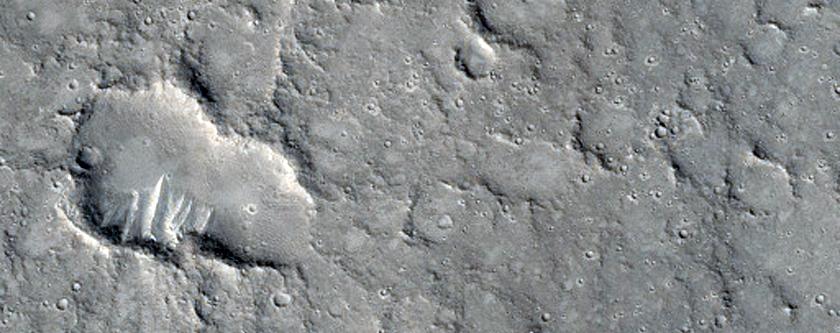 Cerberus Palus Lava Margin