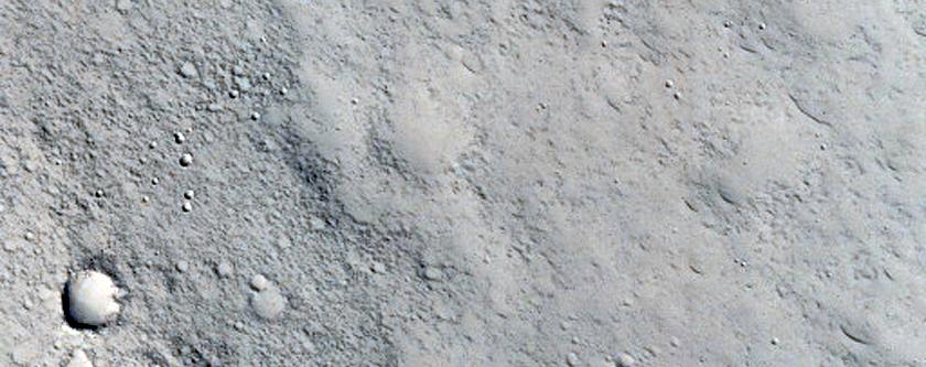 Rimless Pits in Utopia Planitia