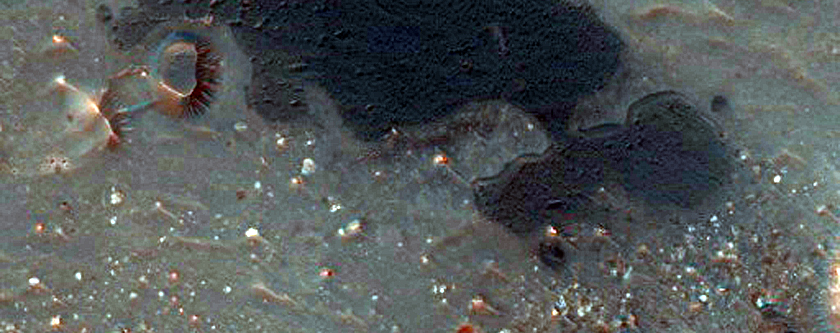 Candidate Landing Site for 2020 Mission in Eberswalde Crater